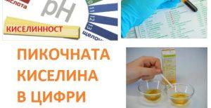 pikochna-kiselina-03